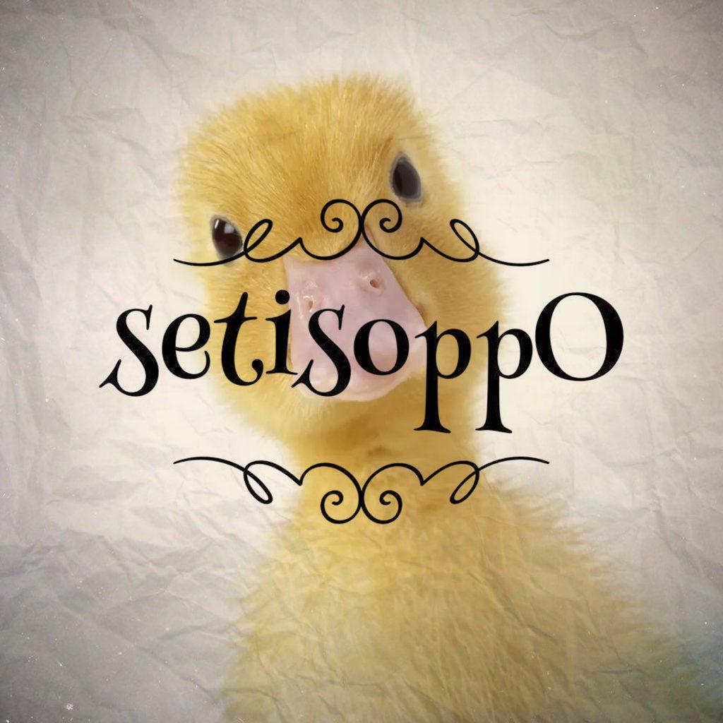 setisoppO